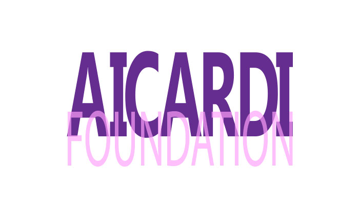 Aicardi Foundation Fundraiser.